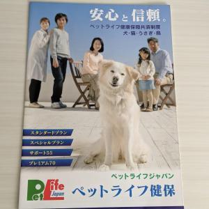 うさぎも入れる!ペットライフジャパンの補償内容から口コミ情報まで徹底評価!