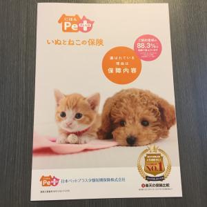 最低限ここだけチェック!日本ペット少額短期保険の補償内容を徹底解説!