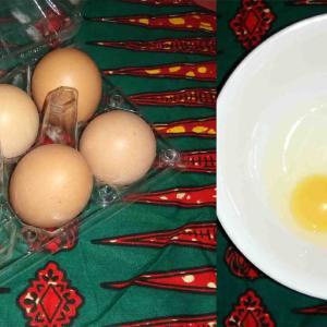 【サルモネラ菌】をやっつけて【生卵】を食べてみたい!