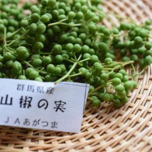 季節の瓶詰め*山椒の実