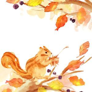 秋ですね☆②