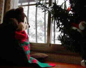 四コマまんが「たぬきのクリスマス・イヴ」
