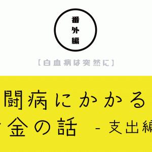 【白血病は突然に】 <番外編> 闘病にかかるお金の話 〜支出編〜