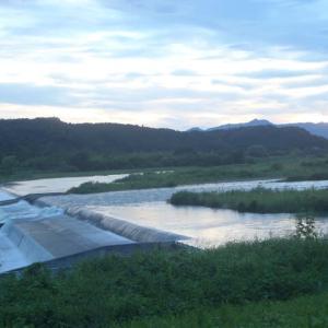 日没のころ、多摩川土手を散歩していると、さっちゃんと2往復の会話が成立しました。半年ぶりかな?