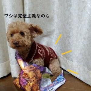 ● 【動画】新聞袋に入ろうとする犬。