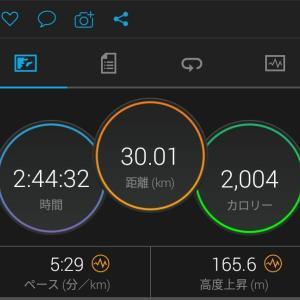 父の日30キロ走