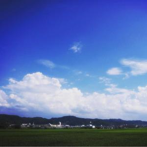 夏ざます〜