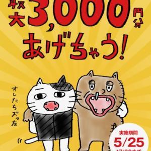 明日まで!1000円プレゼント!!
