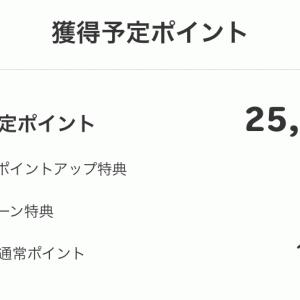 何これ?25000円も増えた!