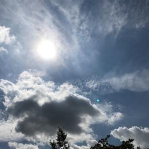 【保育士試験】まで約3週間と秋の空