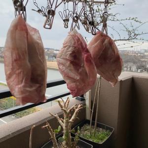 メディカルアロマの副産物とmusucari farm