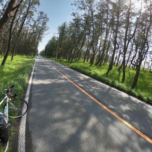 【自転車旅】福井⇒青森(5日目 新潟県新潟市→山形県酒田市)