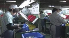 日本の景気 雇用に変調か 製造業の求人も減少 - 政治・経済ニュース掲示板|爆サイ.com関東版