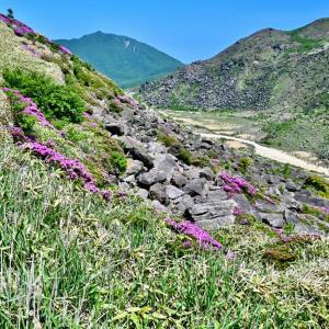 くじゅう、すがもりから三俣山西峰の稜線へ