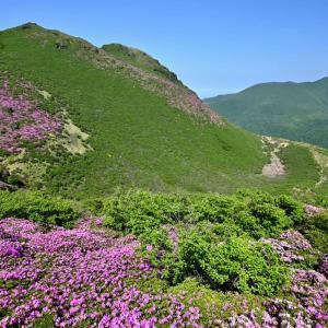 くじゅう、三俣山西峰手前の稜線にて