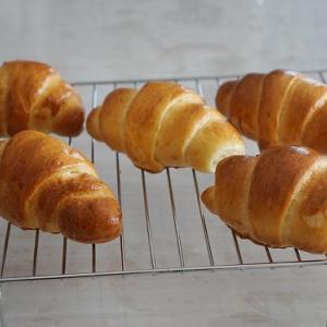 ミルクバターロールレッスン