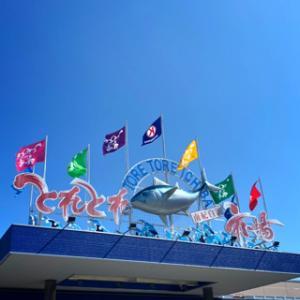和歌山県の旅 ⑨/南紀白浜(とれとれ市場:白浜海中展望塔:千畳敷)