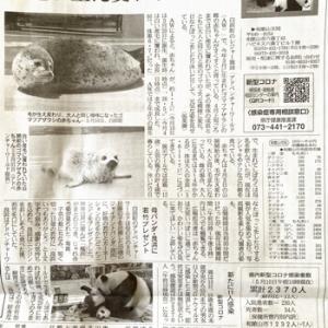 ⑦ 和歌山県の旅 3日目/南紀白浜:チェックアウト