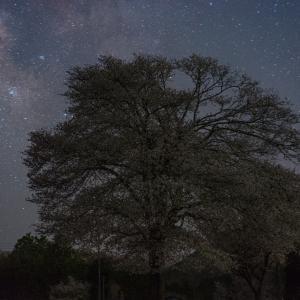 奈良県の星景写真
