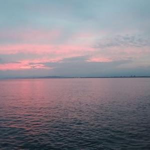 9月20日 江ノ島釣行他