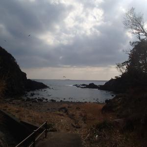 2月17日 南伊豆釣行 赤崎