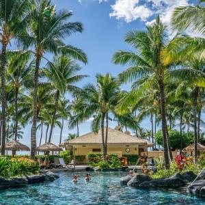 【ゆるーい食育】第2回:テーマはハワイ〜世界の料理を一緒に知る・作る〜