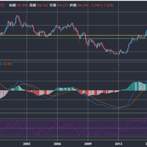 ドル円急落。どこまで下落する??米国株投資家はドル転するべき??