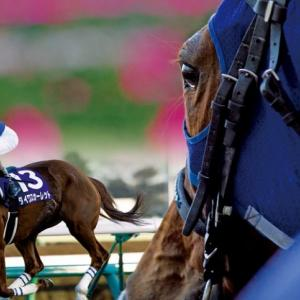 【 今週の競馬予想 ~軸馬~ 】2020/03/29(日)