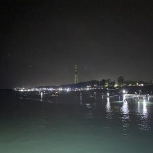 2020 富山湾の神秘ホタルイカ