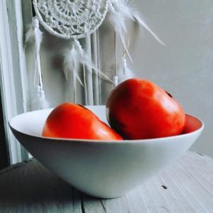 秋の味覚の代表「柿」を安藤雅信さんのオランダボウルに盛ってみた。