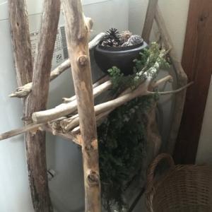 Bois flotte:流木(driftwood)と暮らす〜流木インテリア&流木DIY。