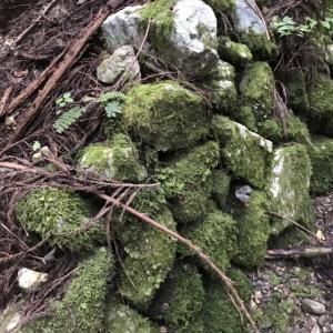 忘却の地の、忘却のマンガン鉱山でピンクの石を探す。