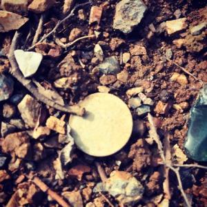 諸行無常「草ヒロ」馬の目皿片と古銭、あるいはイリデッセンス。