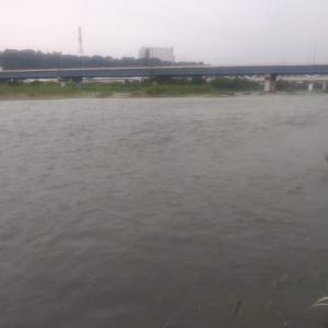 七月16日の相模川