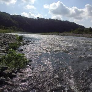 2021 相模川水系の鮎釣り解禁