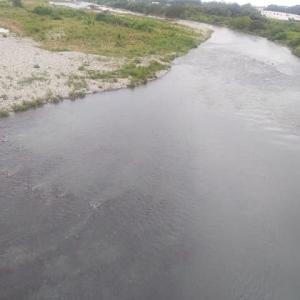 七月十二日 相模川の様子