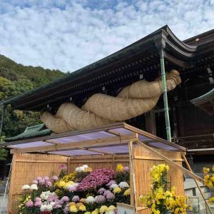 新宮〜古賀〜福間 宮地嶽神社ウォーキング