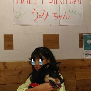 うみちゃんのお誕生日会と仲間たち