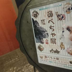 鼻ぺちゃ展2019 浅草橋