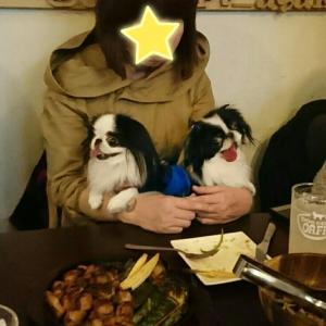 遅れて参加のお誕生日会 ドッグデプトカフェ浅草隅田川テラス