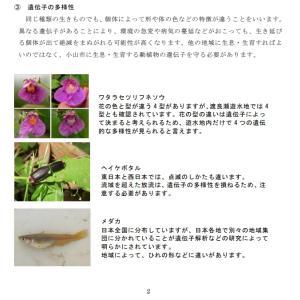 小山市の生物多様性地域戦略「生物多様性おやま行動計画」を検証するよ! その4 ここが変だよ「おやま行動計画」 詳細編
