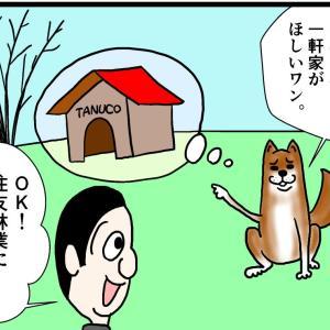 住友林業で犬小屋を建てる