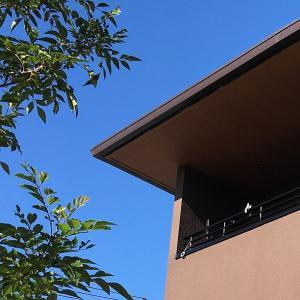 外壁だけで決めちゃいたくなるハウスメーカーを3つご紹介