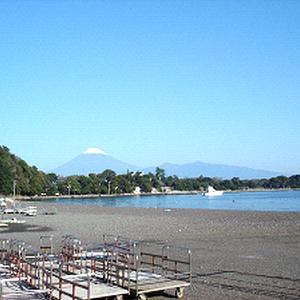 【車中泊・西日本の旅1】富士山を見ながら伊豆を周る