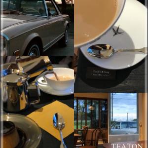 松林が続く海沿いのコロニアルな会員制カフェ・TEATON