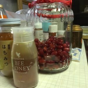 鳥取の田舎暮らし グミ酒