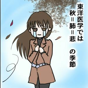秋は「肺=悲」の季節です