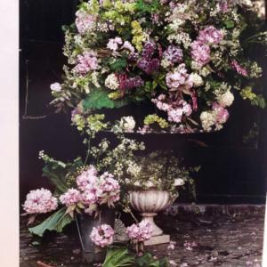 自然からのおいしい花のレシピ