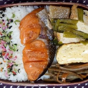 3月のお弁当(塩鮭)