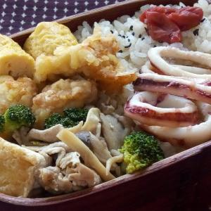 5月のお弁当(イカの塩酒粕焼き)